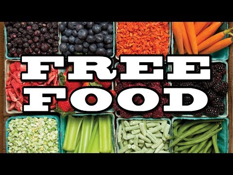 Free Food Thrive Life Offer from Big Family Homestead thumbnail
