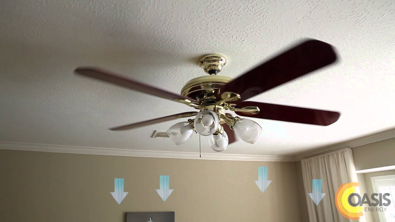 Three Things You Need To Know About Ceiling Fans Oasis Energy Youtube