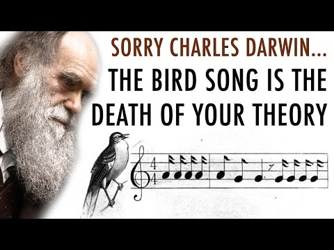 Discovery of Bird Songs Defy Royal Society Open Science and Charles Darwin Evolution Theory
