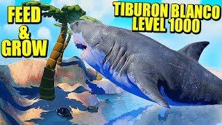 TIBURON BLANCO LEVEL 1000 - FEED AND GROW: FISH   Gameplay Español