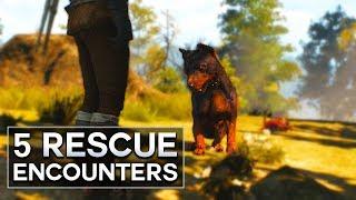 Witcher 3 - 5 Rescue Encounters (Velen)