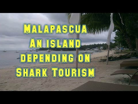 Malapascua Documentary: an island that depends on Tourism-Thresher Philippines