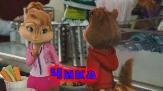 Элвин И Бурундуки Перепели Песню Чика(Артур Пирожков)