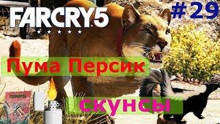 Персик Far Cry 5 и скунсы.