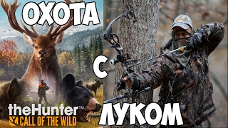 thehunter call of the wild охота с луком