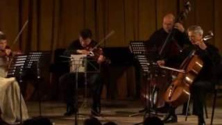 Dvořák String Quintet No. 2 in G major, Opus 77: I. Allegro con fuoco (part 1)