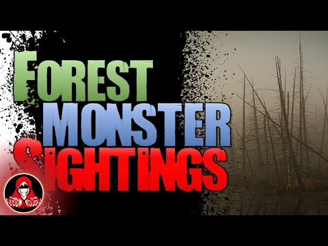 6 REAL Forest Monster Encounters