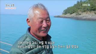한국기행 - Korea travel_소쿠리에 담아 봄 4부- 청산도, 봄이 오나 봄_#001