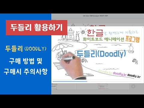두들리(Doodly) 구매 방법 및 구매시 주의사항