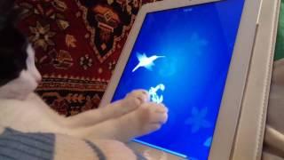 Кот играет в игру на планшете iPad apple #2