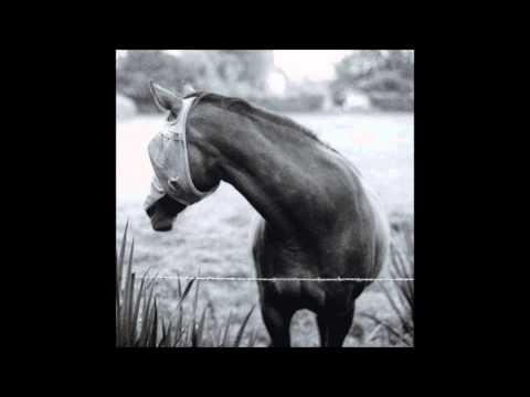 Kristin McClement - Giant No Good (The Wild Grips, 2015)