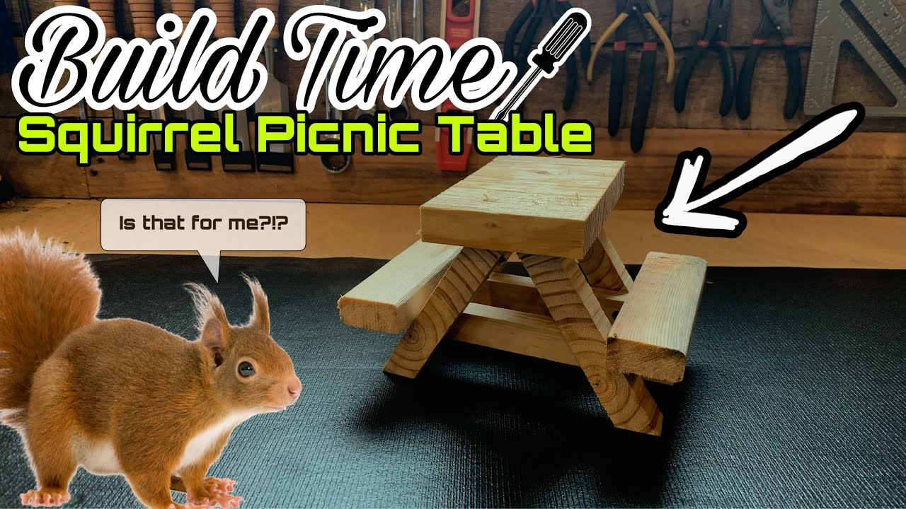 How To Build A Squirrel Size Picnic Table Meet Jerry The Adorable