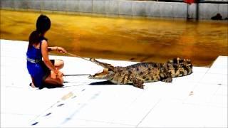 8月份《旅行家》旅游杂志!苏梅岛好玩!鳄鱼!惊心动魄!
