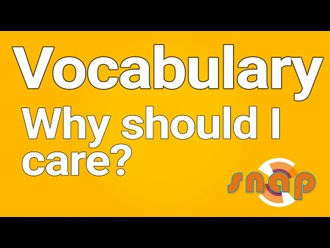 Vocabulary in reading (1/2) — importance and linguistic concepts