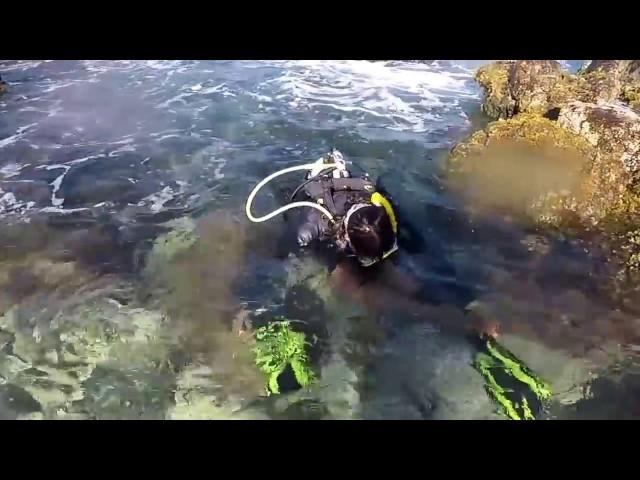 Aruba-February 2017 Scuba Red Stone shore dive entry Roger & Norman