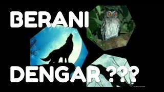 Download Lagu MIX SUARA SERAM BURUNG HANTU-SERIGALA-GAGAK || SCARY ANIMAL SOUND  #serigala #burunghantu #gagak mp3