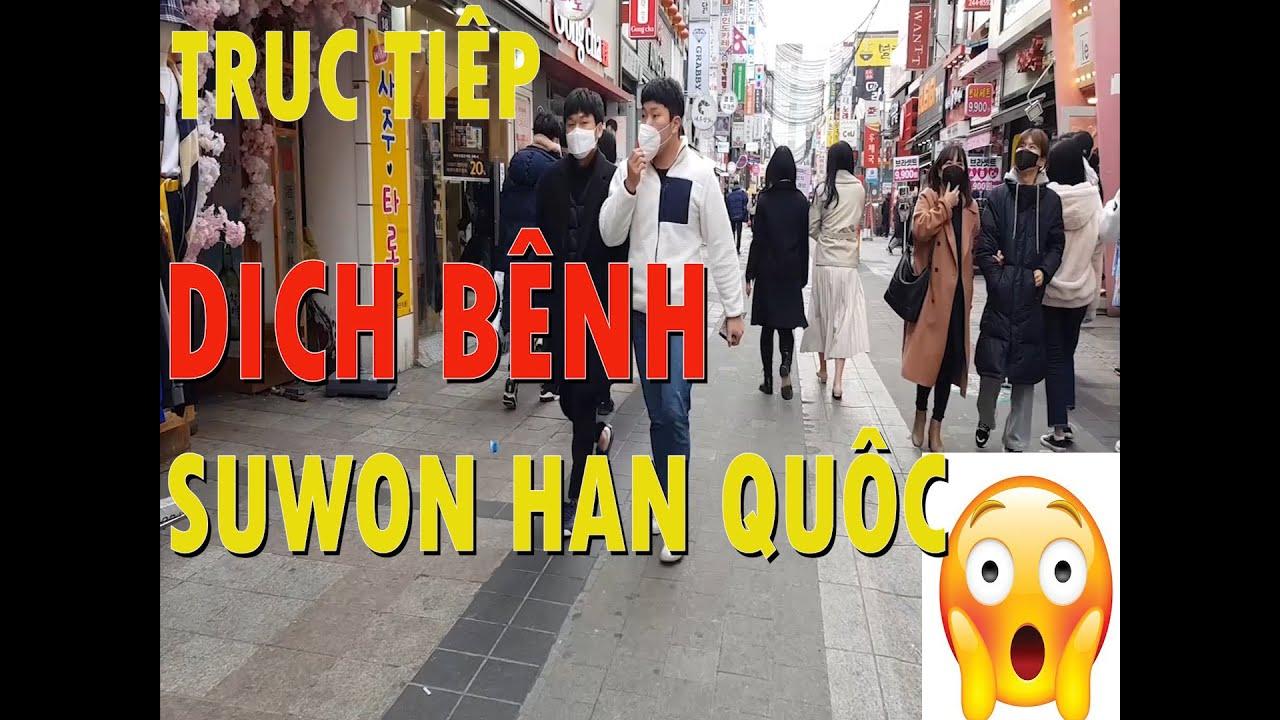 Trực tiếp dịch bệnh tại Hàn Quốc || NHIP SONG HAN QUOC