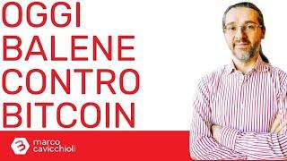 potrebbe crollare bitcoin il mercato