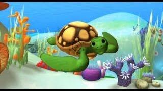 Aprender animales, la Tortuga marina - videos educativos infantiles