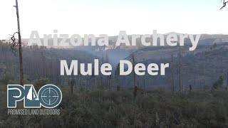 Arizona Early Archery Mule Deer Hunt