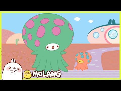 Molang - The aquarium | Comedy Cartoon | More ⬇️ ⬇️ ⬇️