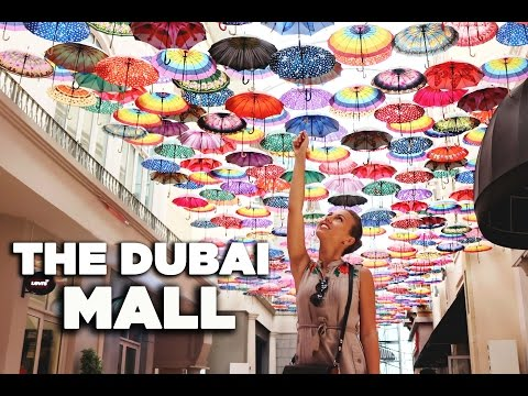 The Dubai Mall & Dubai Aquarium.  The largest mall in UAE.