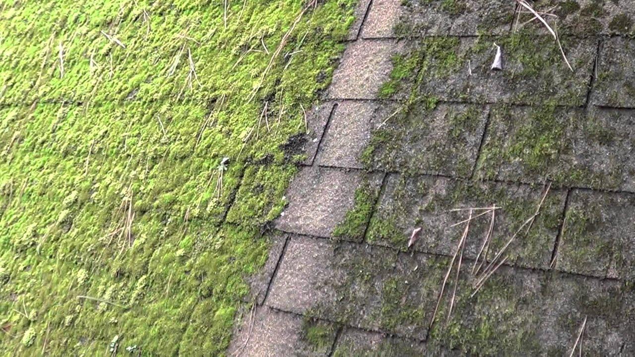 Galvanized Steel Halts Moss On Roof Shingles Youtube