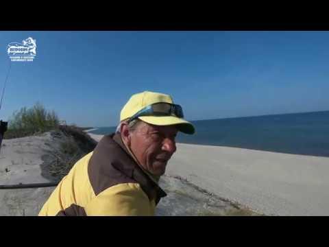 VLOG: Красота морской рыбалки и Куршской косы. Апрель 2019.