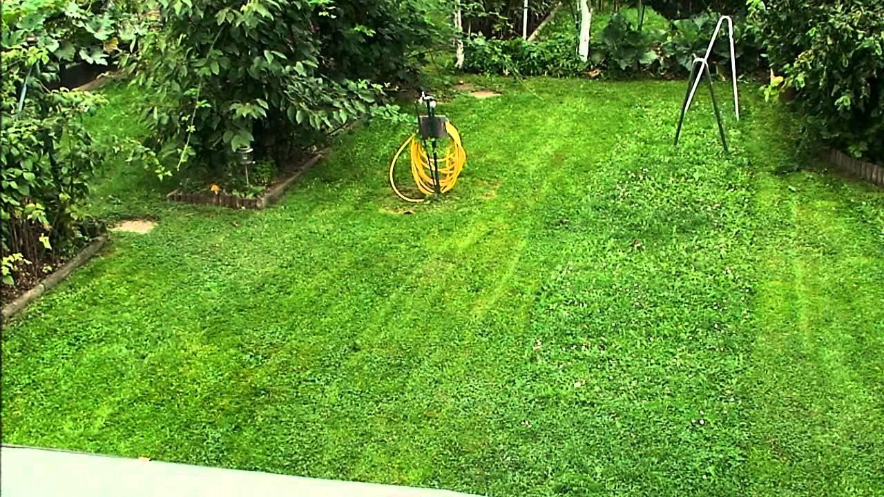 Rasenmahen Im Garten Mal Anders Youtube