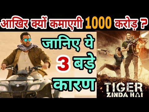 Tiger zinda hai will earn 1000 crores this big five reasons | Salman Khan | Katrina Kaif