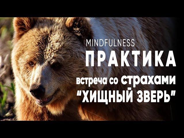 Mindfulness практика работы со страхами