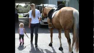 Registered quarter horse mare, Smart Classy Cutter