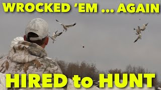 WROCKED 'EM AGAIN ... Hired to Hunt Season 6: Hunting Limits of Ducks & Geese at Ongaro's.