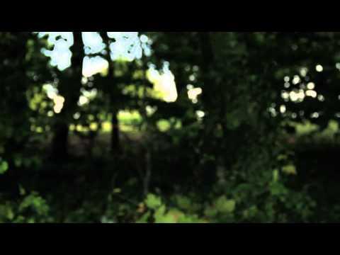 A Dark Horse - Take Me Home