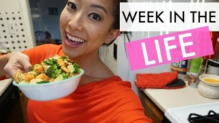 Balancing Work & Play | Week in the Life
