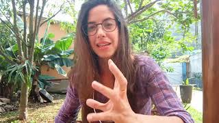 (PT) Transconselhos Milena Franceschinelli