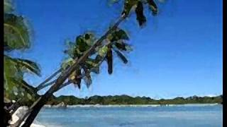 Fijian Farewell Song - Isa Lei -  Toberua Serenaders .wmv