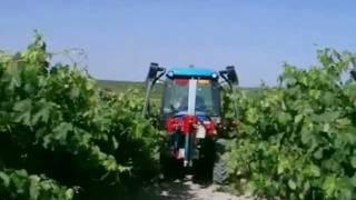 Cane trimmers /Despuntadora viñedos /Ecimeuses-rogneuses vignes