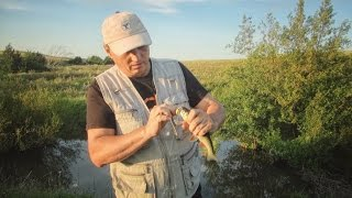 [Школа рыболова] - Ловля голавля и щуки на малых реках