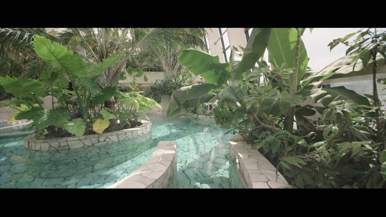 Spa Deep Nature Center Parcs Domaine Du Bois Aux Daims Youtube
