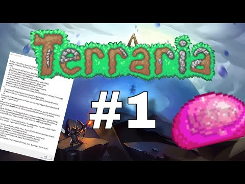 Terraria Modded #1 // Failing The Game Before It Starts And Pinkzor