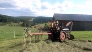 Schwaden mit LANZ BULLDOG D1616 und Bautz Heuma (Spinne)