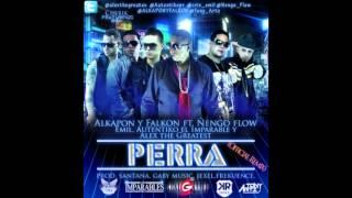 Alkapon & Falkon Ft Ñengo Flow,Emil,Autentiko El Imparable Y Alex The Greatest -- Perra YouTube Videos