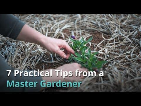 The Best Master Gardener Tips