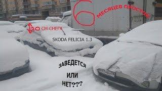 Заведется ли?  skoda felicia 1.3+суперэкспресс на 14.04.18 с коэффициентом 1590