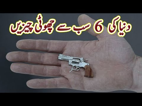 6 Smallest Things in the World | Education | Urdu Documentary | Factical