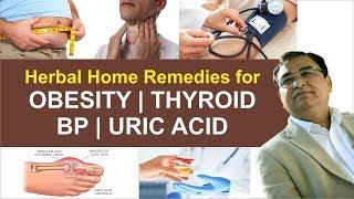Cure of Obesity thyroid  BP Uric Acid by Anil Bansal  Vedic Upchar