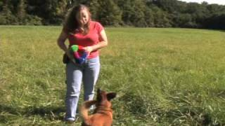 Mel Bussey On America's Dog Trainer (2 Of 2)