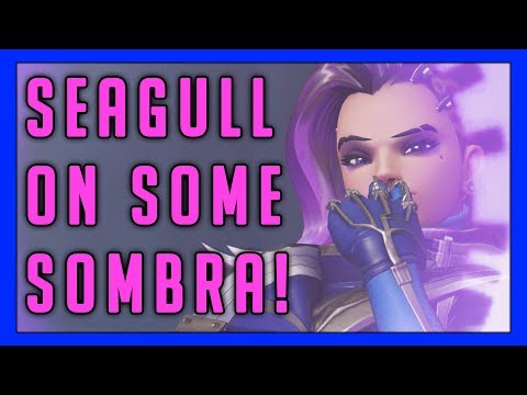 Seagull Playing Some Sombra! - Overwatch