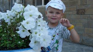 видео Отдых с детьми в Витязево
